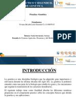 Taller 2 Presentacion _Power Point Exposicion