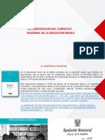 Implementacion Del CNEB