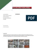 A2_SLM_PDF