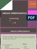 anexosembrionarios-131016192500-phpapp01.pptx