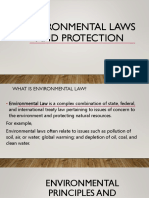 Environmental Laws and Protection