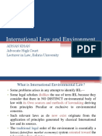 International  law and environment