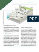 Almacenamiento de Carbono y Costo Económico INFORMACION ADICIONAL