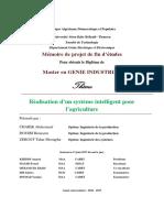 Ms.ELN.Zergot+Douibi+Charik.pdf