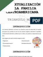 Contextualización de La Familia Centroamericana (1)