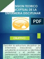 2. Dimensión Teorico Conceptual de La Enf