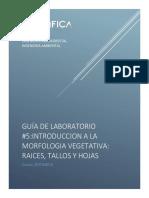 Botanica-guia de Laboratorio 5_2019 i