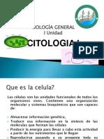 10_1 Citologia19