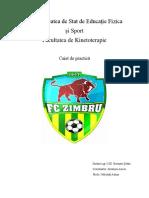 Agenda-Practica-Zimbru.docx