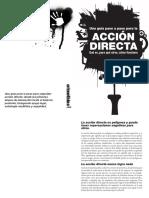 Acción directa y anarquia