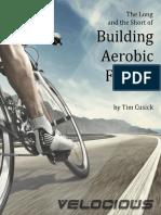 Building Aerobic Fitness