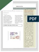 PAPER 1 Mas Conclusiones