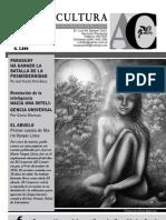 ARTE y CULTURA Nº29 - PortalGuarani