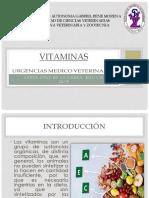 Vitaminas Tema 1
