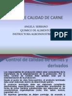 control de calidad carnes y derivados