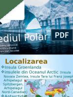 264844380-Mediul-Polar