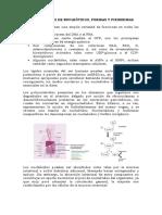 Metabolismos de Nucleótidos