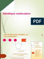 genetique_moleculaire (2)
