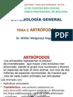 Tema 2 Artropodos