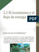 Ecosistema y Flujo de Energia