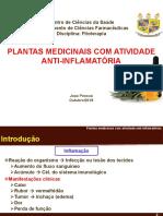 Plantas Medicinais Com Atividade Anti-Inflamatórias