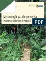 Metodologia para implementar PRNV.pdf