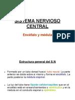 4 SNC. Encéfalo y médula.ppt.pdf