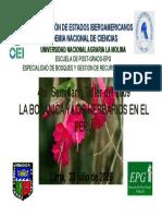 Presentación Seminario La Botanica y Herbarios