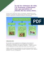Procesos y funciones vitales