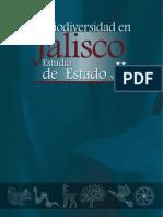 Jalisco II Dg