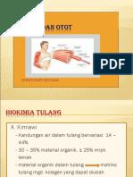 1.0 Biokimia Otot Dan Tulang