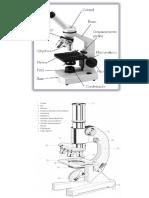 Informe de Microscopia