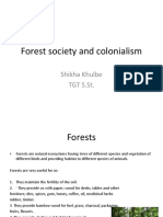 Forest Soc
