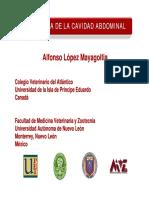 03-diagnostico_abdominal (1).pdf