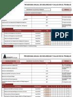 SGSST-PPG-01 Programa Anual Del SST_2019