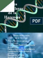 diapositivaacidosnucleicos-120528180012-phpapp01