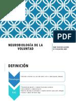 Neurobiología de La Voluntad