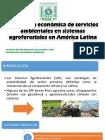 V. Económica de Sa en Saf en America Latina
