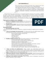 AUTODESARROLLO.pdf