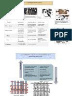esquema de lopez compeny.pdf
