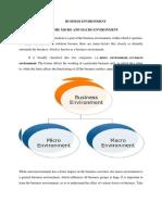 Business Environment Final Paper