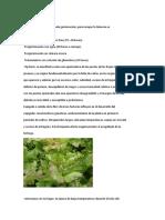 322604719-FISIOPATIAS-jimdocx.docx
