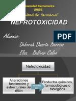 nefrotoxicidaddefarmacos-110810130019-phpapp01