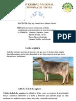 exposicion de leche organica.pptx