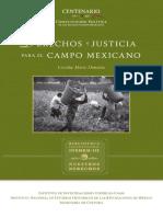 Campo Mexicano
