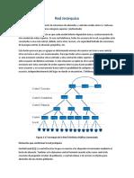 JERARQUIZACION TELEFONICA.docx