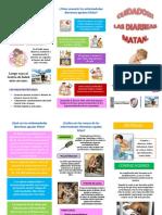 237963165-Triptico-EDA.pdf