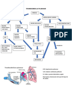 Fisioátologia de Enfermedades Respiratorias