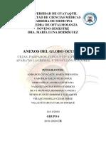 Anexos Del Globo Ocular