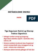 METABOLISME ENERGI.pptx